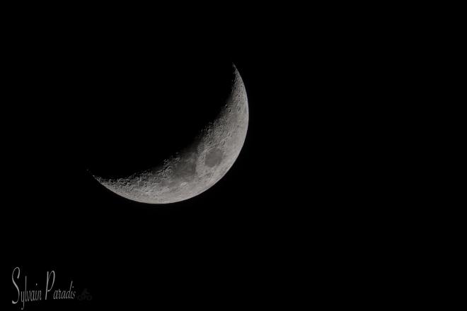 _1SP8624_lune